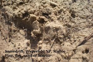wm-ep-snowdrift-116comp