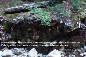 CH-jc-weissenstein-3456comp