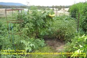 vic-rw-food-0318ylcomp