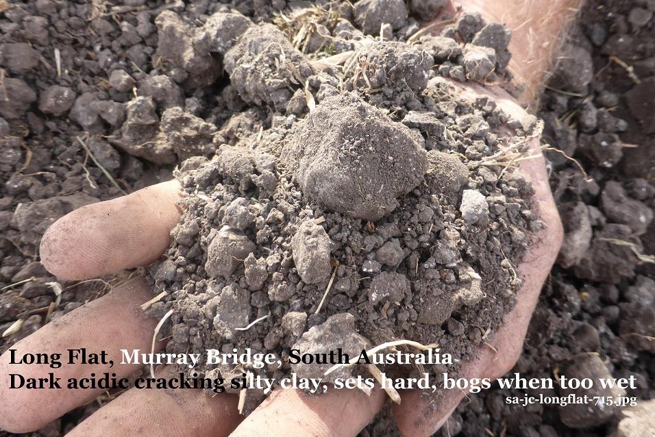Link List Of Soil Selfies From South Australia Soils