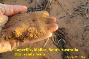 sa-kp-copeville-soilcomp