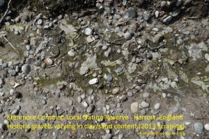 Stanmore Gravels at Stanmore Common Harrow London UK